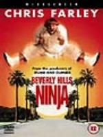 Постер к фильму Нинзя из Беверли Хилз / Beverly Hills Ninja (1997)